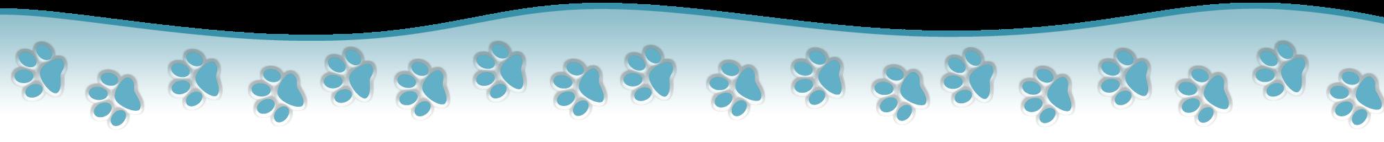 K9 Walking: Dog Walker, Puppy/Home Visits, Dog Taxi - Abingdon - design image