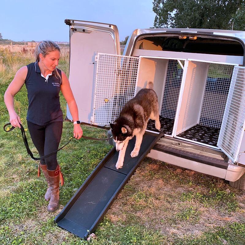 Dog Taxi, Abingdon